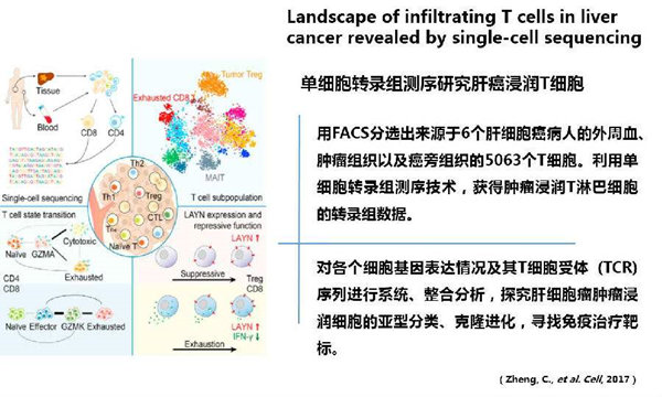 单细胞入门-读一篇scRNA-seq综述讲解