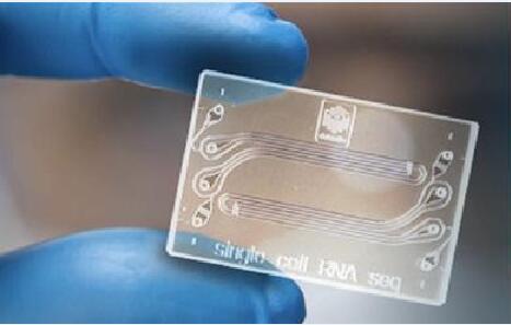 用于高通量单细胞RNA测序的惯性有序辅助液滴微流体