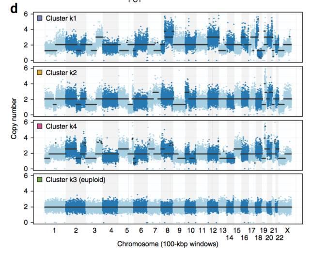 不使用微流控如何实现高通量测序单细胞基因组?