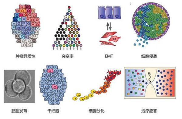 单细胞RNA测序方法的比较分析